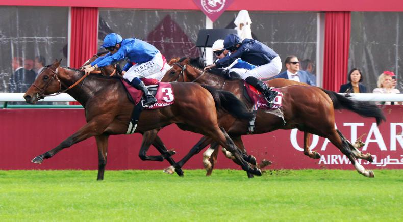 FRENCH CLASSICS PREVIEW: Ecrivain can speed to Poulains prize