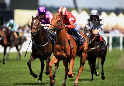 Setback rules Daahyeh out of 1000 Guineas bid