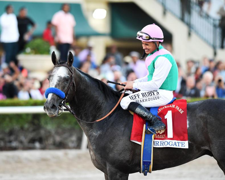 Juddmonte mourning tragic death of champion Arrogate