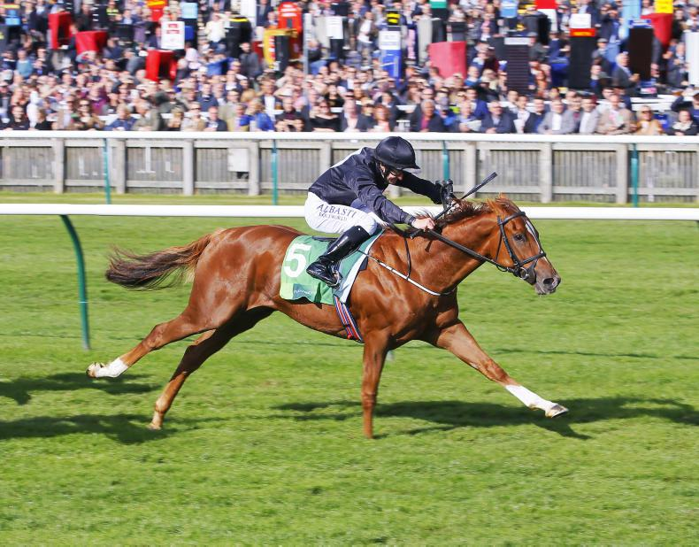 More dimensions to Quadrilateral as fourth victory will see 1000 Guineas success