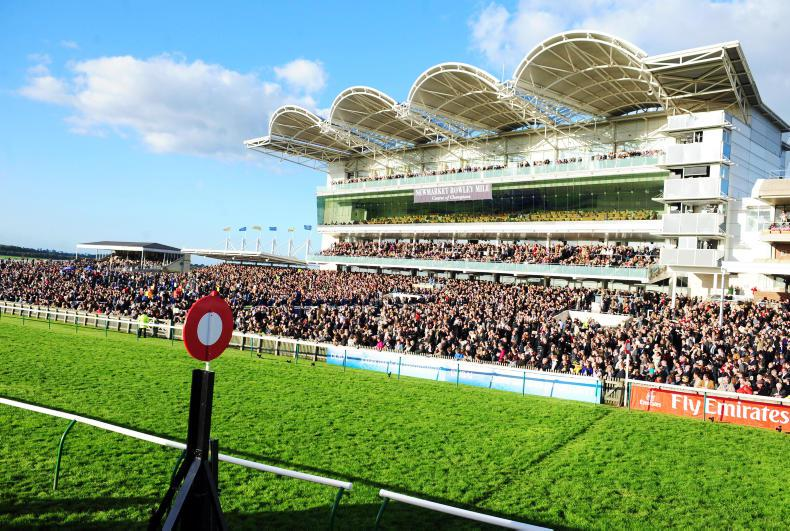Scare at Newmarket as pane of glass falls from grandstand
