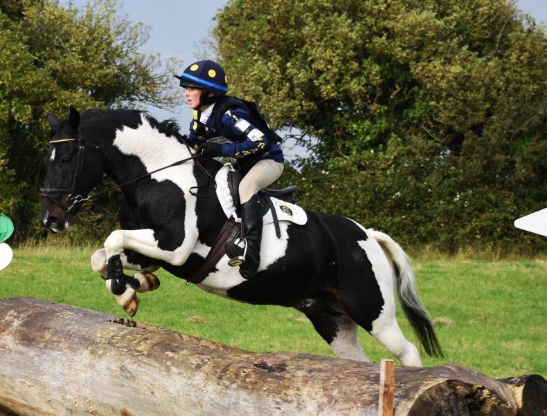 POET'S CORNER:  The Best Pony Ever
