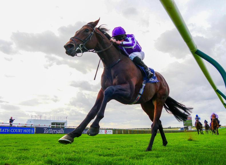DONN McCLEAN: My 5/1 and 14/1 fancies for the Guineas