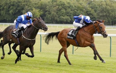 Lord North steps up again for Brigadier Gerard honours