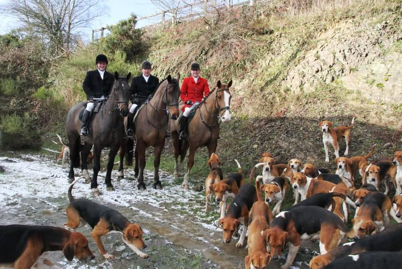 Dashing with the Duhallow Foxhounds