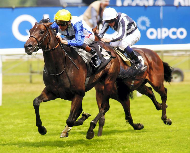 BREEDING INSIGHTS: First-season sires take off at the double