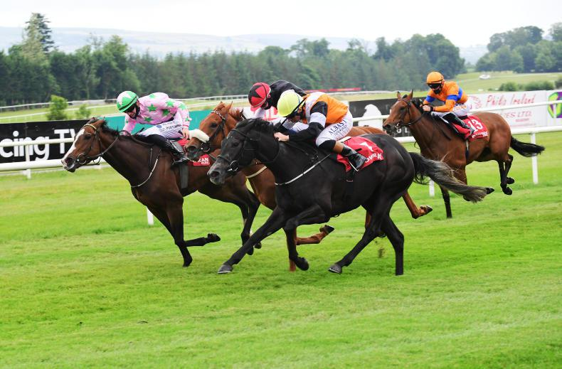 GOWRAN PARK THURSDAY: Cabin serves up promising win for in-form Stack