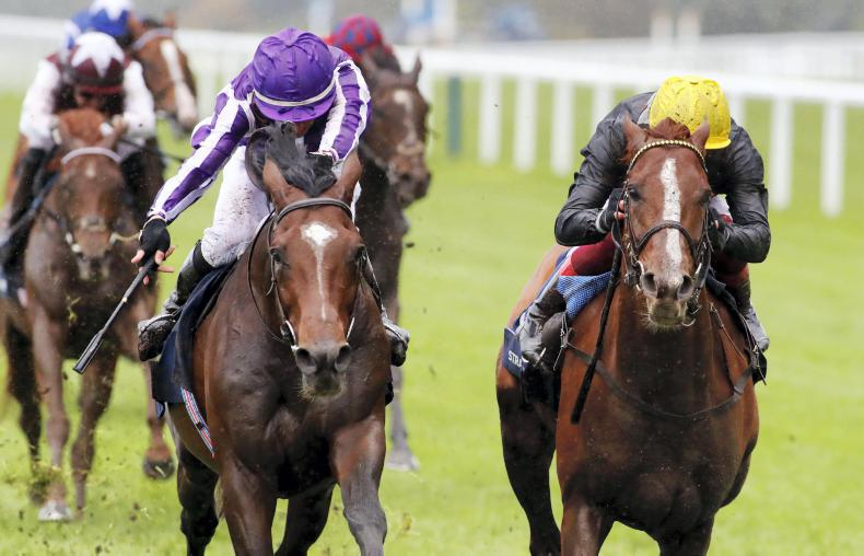 ROYAL ASCOT: Stradivarius set to complete Gold Cup hat-trick