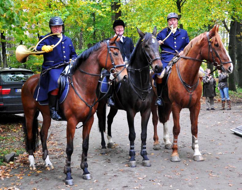 PROFILE - Mikie O'Riordan: The horse whisperer