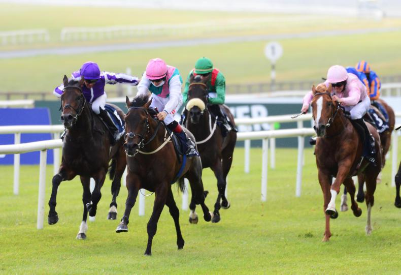 IRISH 2000 GUINEAS: No stopping sizzlin' Siskin
