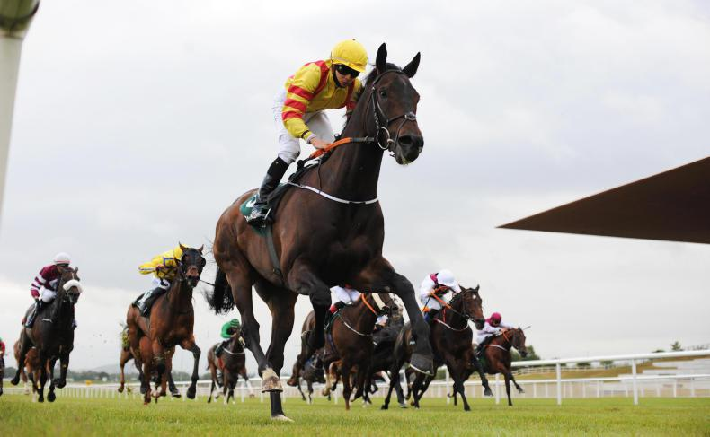 CURRAGH FRIDAY: Bowerman aims straight in the Lincoln