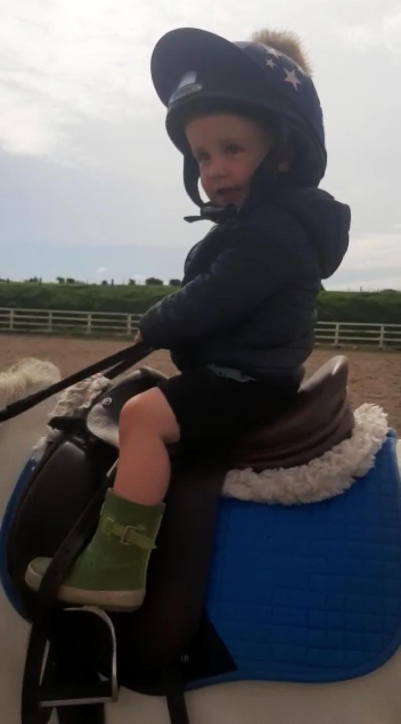 PONY TEASERS:  Billy (2) riding high!