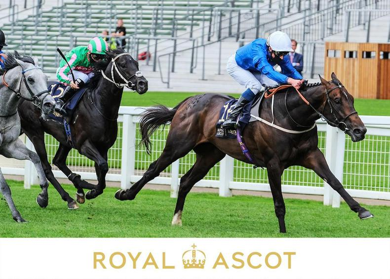 ROYAL ASCOT: Dark Vision sees the way in the Royal Hunt Cup
