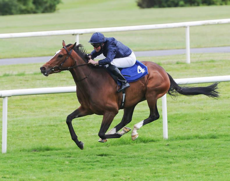 GOWRAN PARK WEDNESDAY: Murtagh and Carroll land doubles
