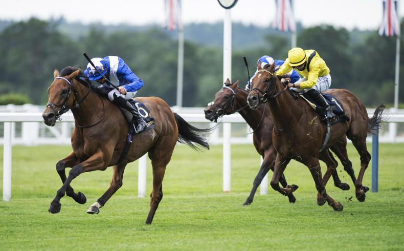 ROYAL ASCOT WEDNESDAY: Lord North comes of age