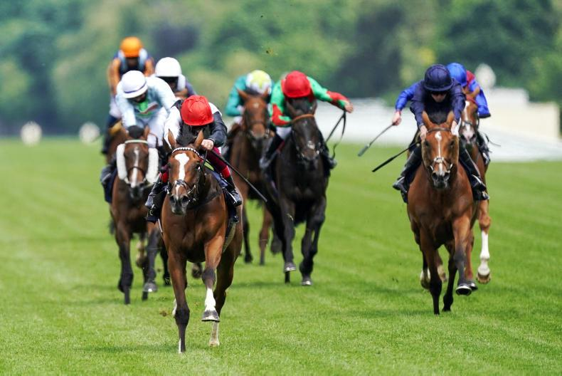 ROYAL ASCOT TUESDAY: Frankly a punters' Darling