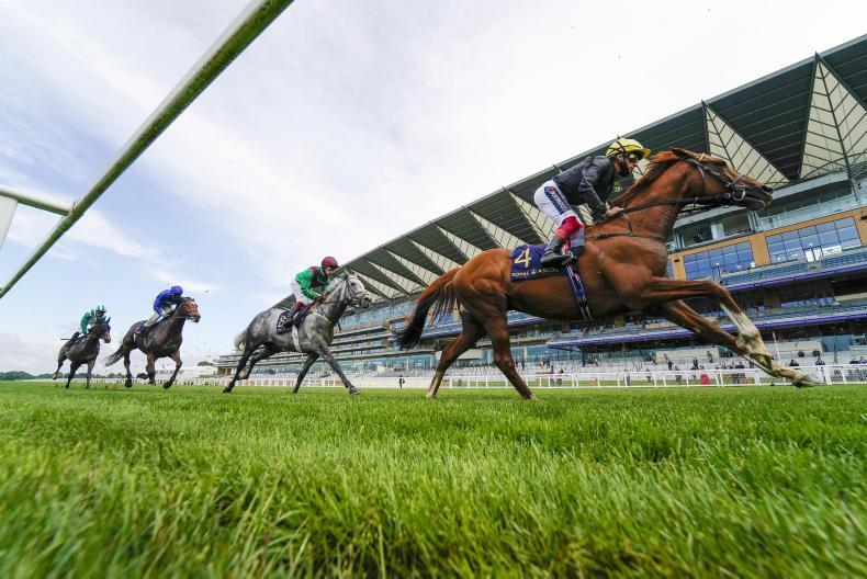 ROYAL ASCOT: Super Stradivarius saunters to Gold Cup hat-trick