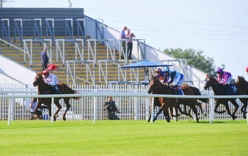 NAAS SATURDAY PREVIEW: Punita the pick for back-to-back wins at Naas