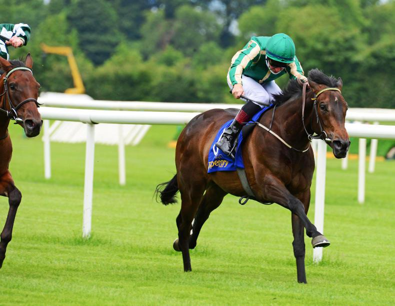 TIPPERARY FRIDAY: Murtagh's Magic measures up well