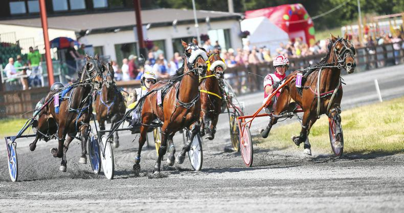 HARNESS RACING: Irish exports on the pace in US