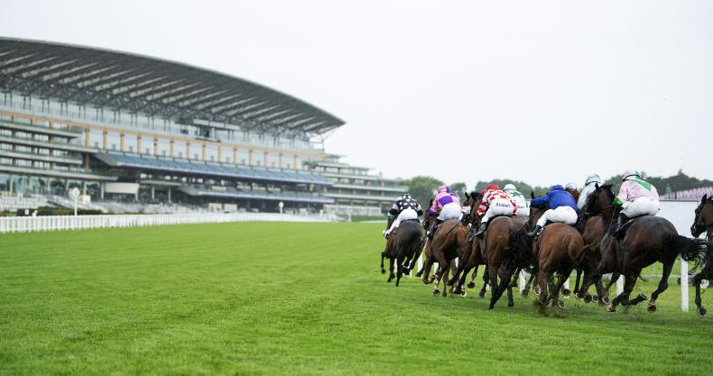 ROYAL ASCOT QUOTES: 'He is such a character and wears his heart on his sleeve'