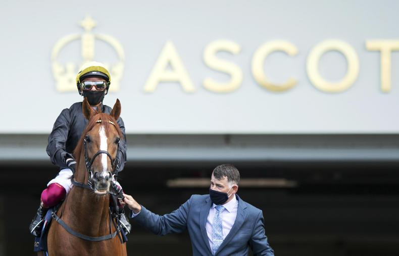 ROYAL ASCOT PHOTOS: A selection of scenes from Ascot behind closed doors