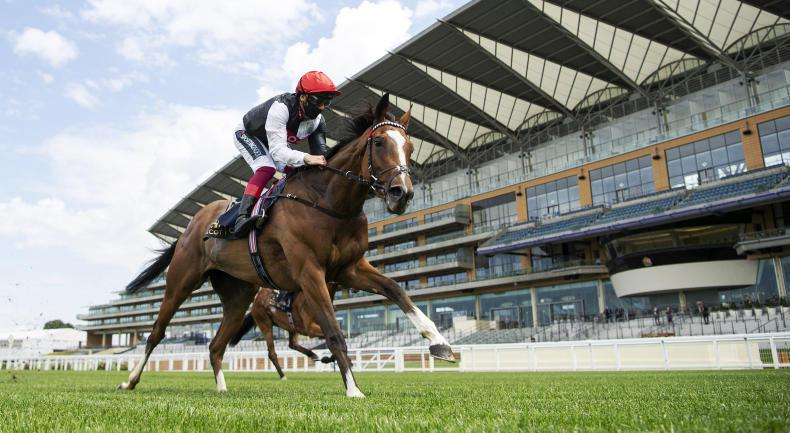 Oppenheimer looking to Darling to deliver Classic full house