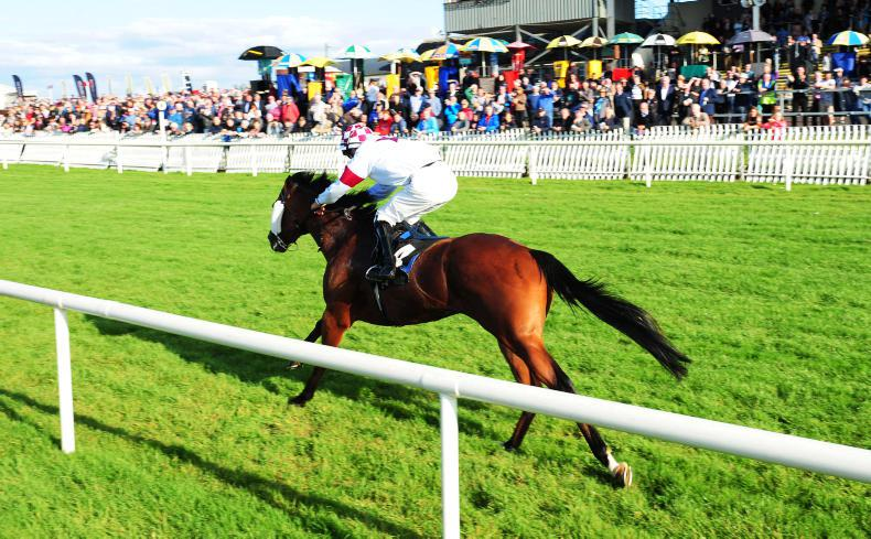AIR COLUMN: On Course: Bellewstown: The hill will be empty next week