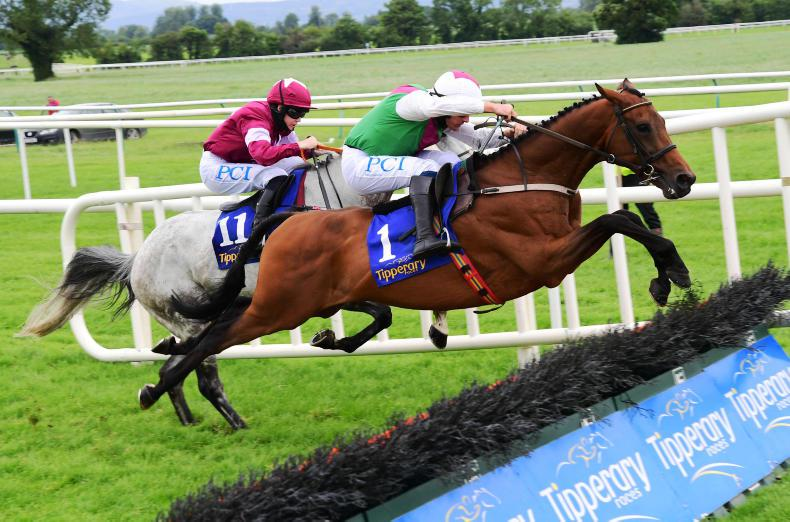 TIPPERARY FRIDAY: Aramon much the best on the day
