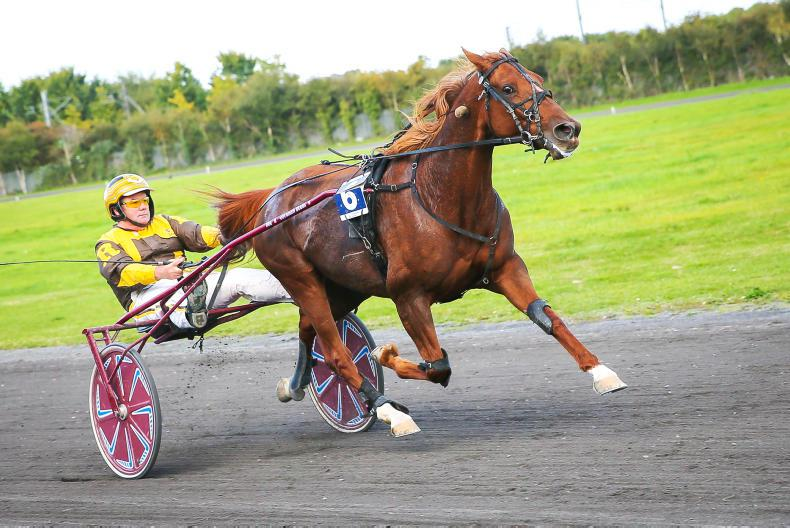 HARNESS RACING:  Up and away with Umbratica