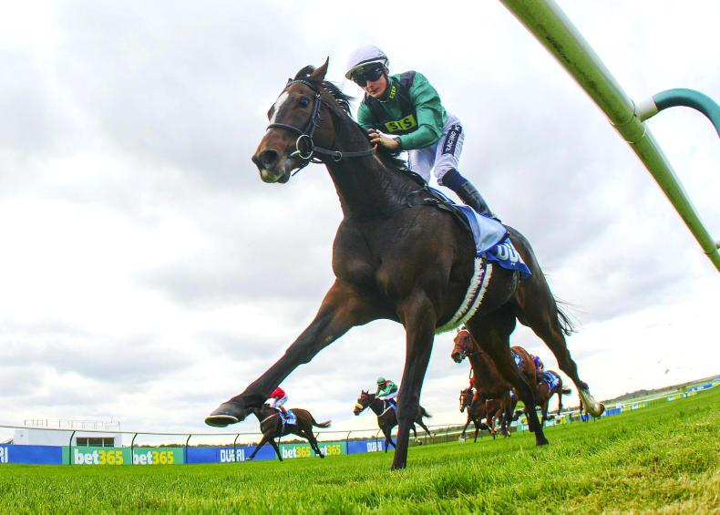 RACING CENTRAL: O'Briens out to extend Irish Derby legacy like no other