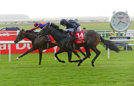 O'Brien not ruling out attempt at Derby double for Santiago