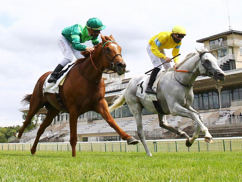 Way To Paris takes Group One gold at Saint-Cloud