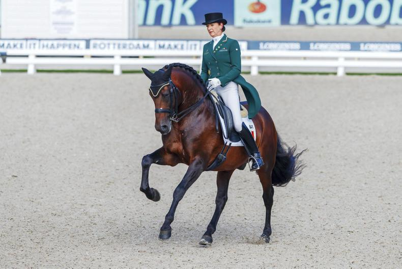 DRESSAGE:  Merveldt and Esporim fourth in Grand Prix Kür in Hungary