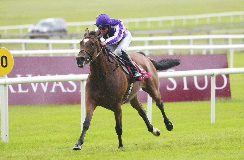 CURRAGH SUNDAY: Spell-binding from Magical