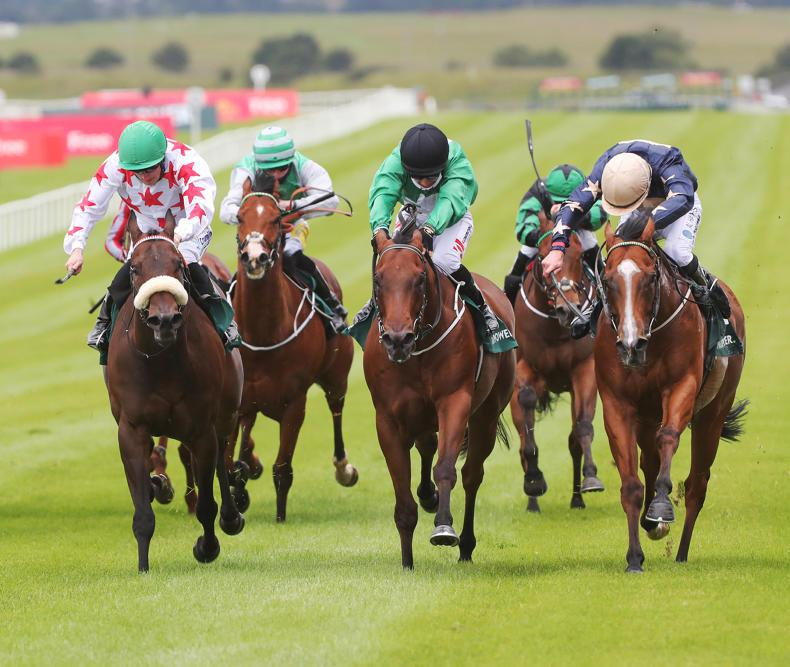 CURRAGH SUNDAY: Career high for Cotter with Strong Johnson