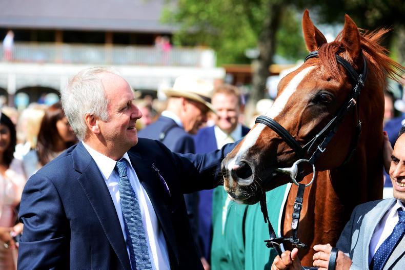 THE BIG INTERVIEW:  Bjorn Nielsen - 'I'm just trying to breed great racehorses'