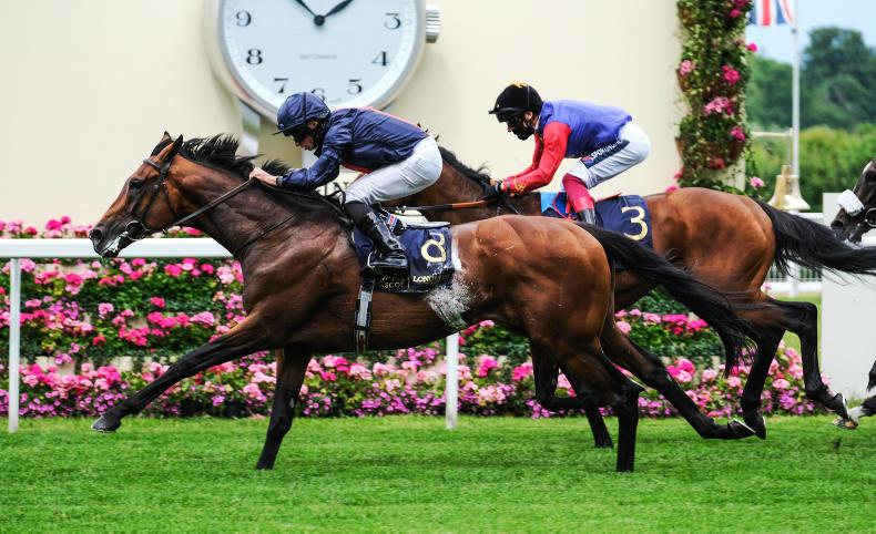SIMON ROWLANDS: Russian worth Derby wager