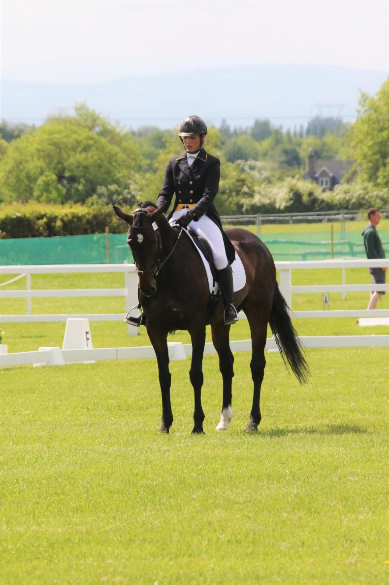 HORSE SENSE: Tips for tactical dressage test riding