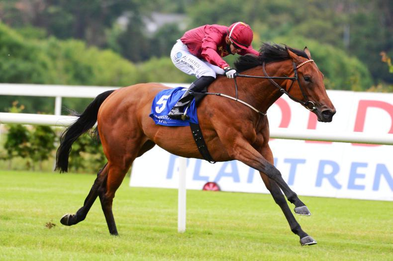 LEOPARDSTOWN WEDNESDAY: Know It All has all the answers