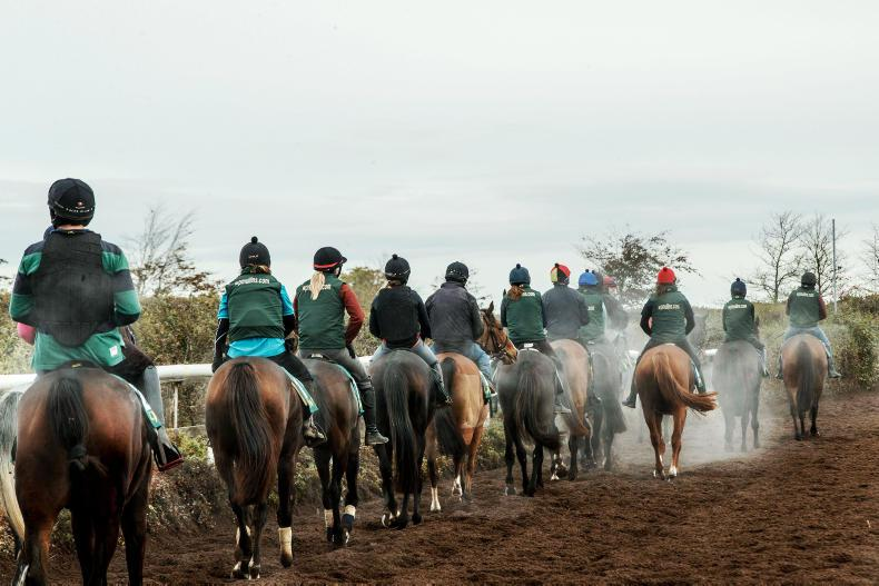 RACING OWNERS: Join the Closutton team for just €120 a month