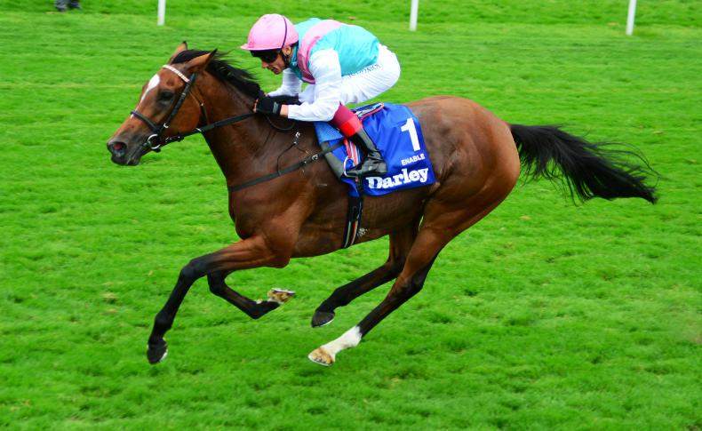 Enable heads super seven chasing Eclipse prize