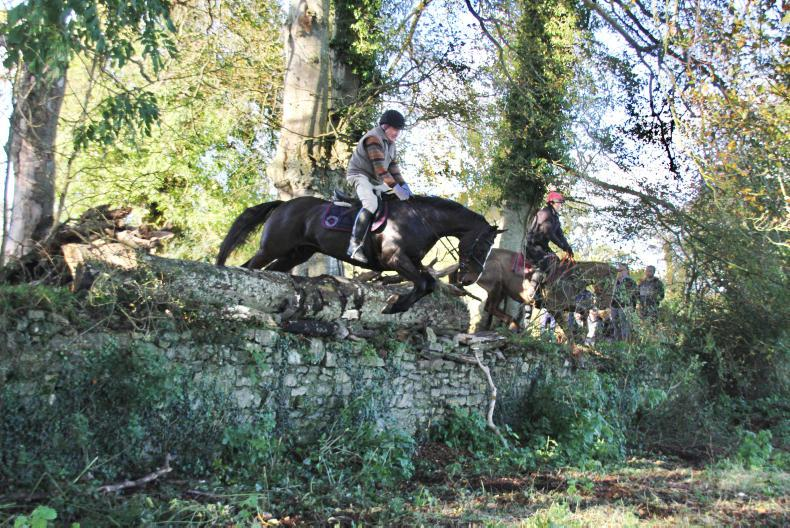 PROFILE: Vet  John Hyde - steeped in horses and hunting