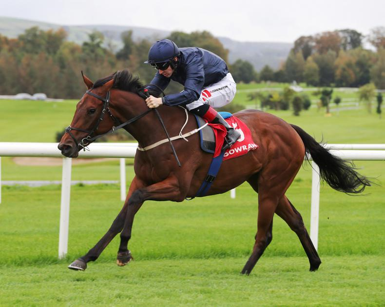 NAAS SATURDAY PREVIEW: Even can excel going up in trip for Lyons and Keane