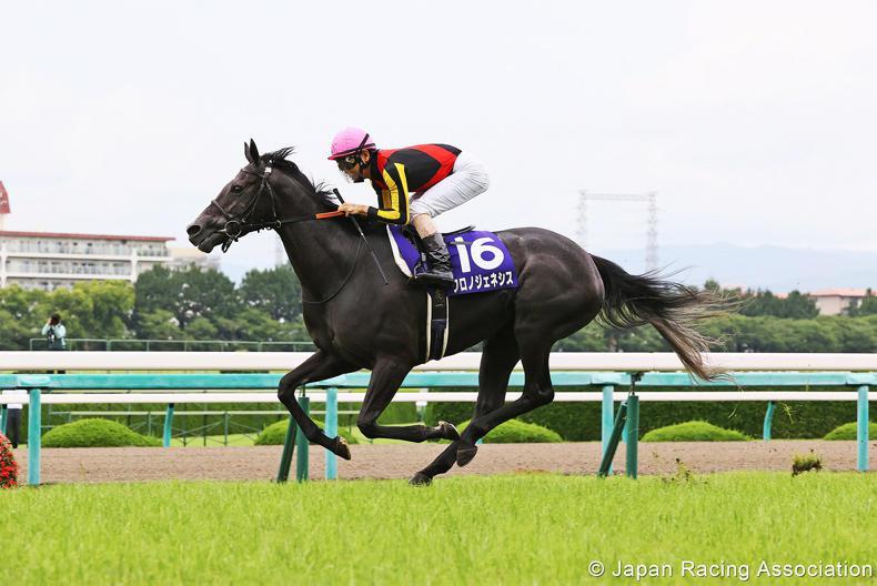 JAPAN: Chrono Genesis destroys star-studded Kinen field