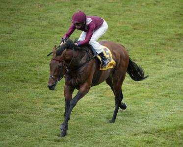 Mishriff bags first French Derby for Gosden