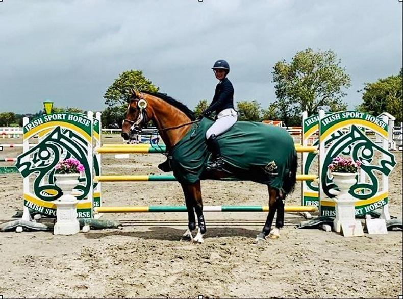 SHOW JUMPING:  HHS Vancouver delivers ISH Studbook win for McEntee