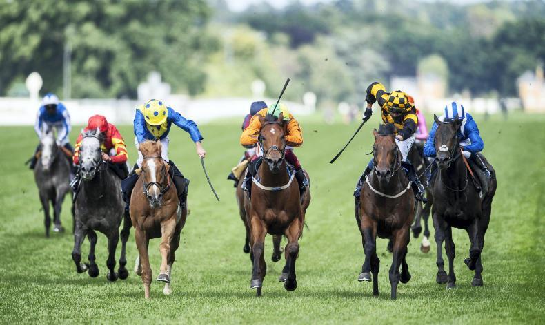Ascot sprint victors set for July Cup clash