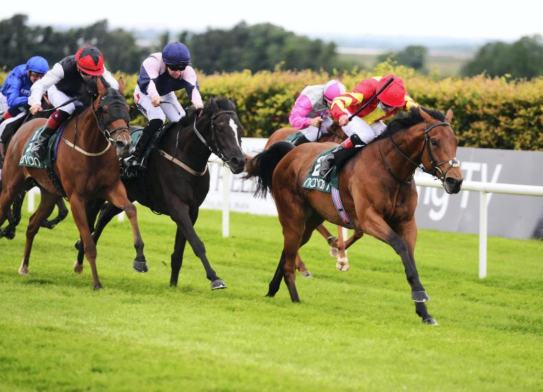 NAVAN FRIDAY: Cracking win by Patrick Sarsfield