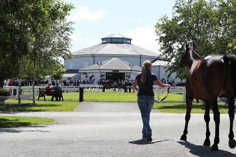 NEWS: Derby Sale postponed until August